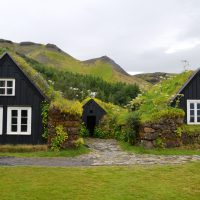 Das Dach der Zukunft ist grün